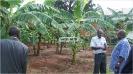 Vice President Visits Kawanda_31